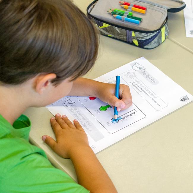 wertvoll-macht-schule-unterrichtsmaterialien